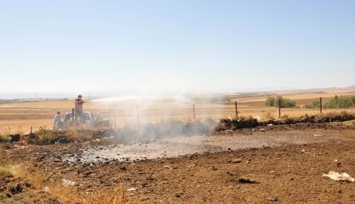 Kırşehir Belediyesi zararlı böceklere karşı ilaçlama başlattı