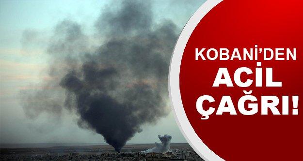 Kobani'den gelen son dakika haberler!