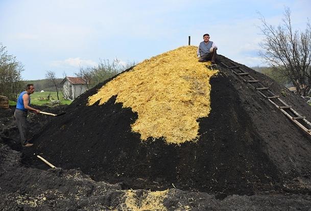 Mangal kömürü işçilerinin zorlu yaşamı