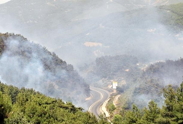 Manisa'daki orman yangını kontrol altında