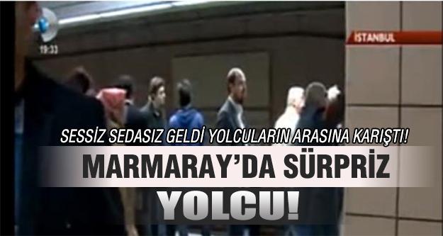 Marmaray'da sürpriz yolcu!