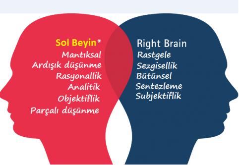 Sağ Beyniniz mi, Yoksa Sol Beyninizi Mi Daha Çok Kullanıyorsunuz