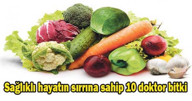 Sağlıklı hayat için 10 doktor bitki