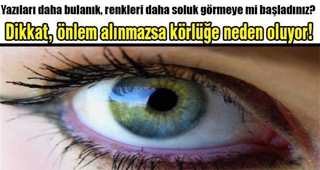 Sarı nokta hastalığına karşı önlem alın