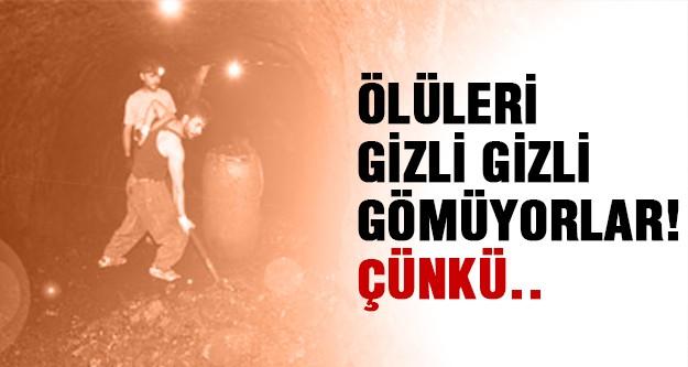 Şırnak'ta korkunç gerçek!
