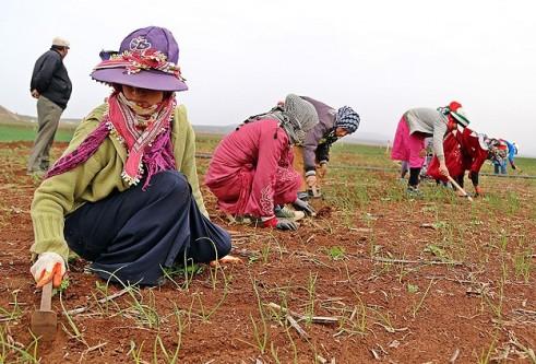 Suriyeli kadınlar 8 mart'tan habersiz!