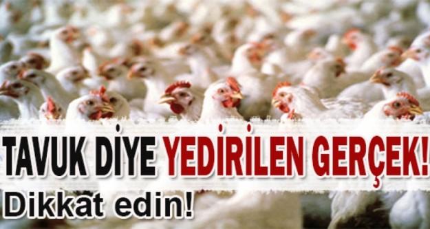 Tavuk diye önünüze konulana dikkat edin!