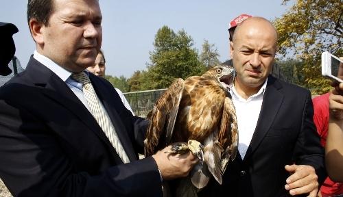 Tedavi edilen şahinler 'Hayvanları Koruma Günü'nde özgür bırakıldı