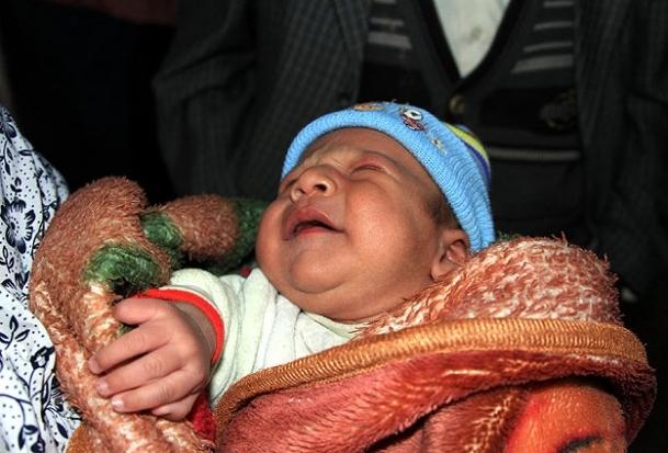 Teym bebek Türkiye'ye emanet