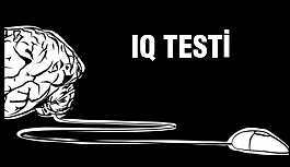 1 dk da IQ testi sonuçlar..