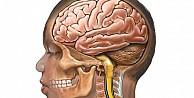 Beyin yaşınızı öğrenin! Sonuçlar