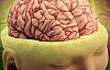 Beyninizi daha iyi çalıştırmanın yolları