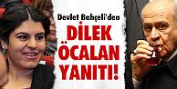 Dilek Öcalan çıkışı!