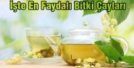 En faydalı bitki çayı hangisi?
