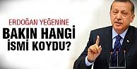 Erdoğan'ın yeğenine bu isim verilmiş?