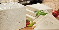 Evde Pastörize Sütten Peynir Yapımı
