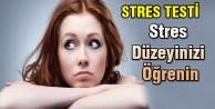 STRES TESTİ
