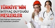 Türkiye'nin ihtiyaç duyduğu meslekler