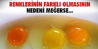 Yumurtanın sarısının renk tonu meğerse...