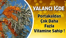Portakaldan Çok Daha Fazla Vitamine Sahip...