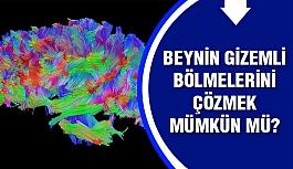 Bilim insanları beynin gizemli bölgelerini...