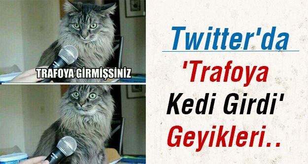 'Trafoya kedi girdi' sözü sosyal medyayı salladı..