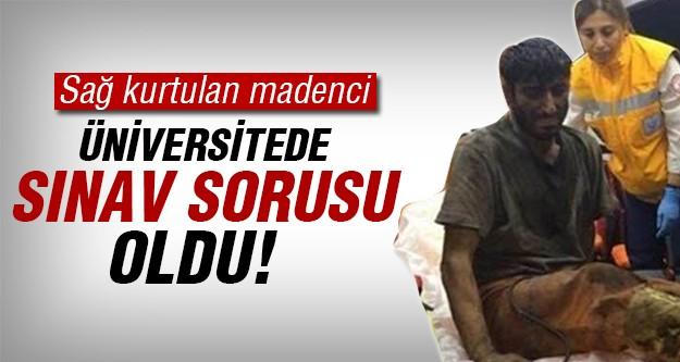 Türkiye'yi ağlatan madenci sınav sorusu oldu!