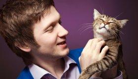Kediniz Sizi Gerçekten Seviyor mu?