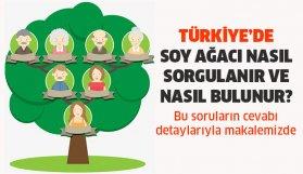 Soy Ağacı Nasıl Öğrenilir?