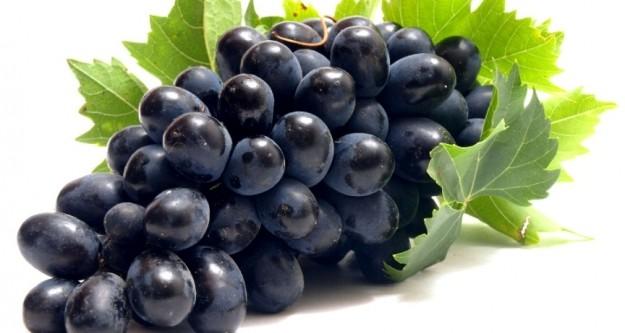 Üzüm bu hastalığa iyi geliyor?