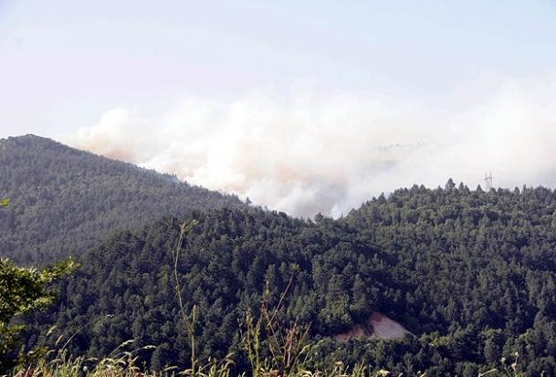 Yenice'deki yangın kontrol altında