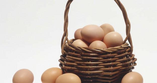 Yumurta için alarm!