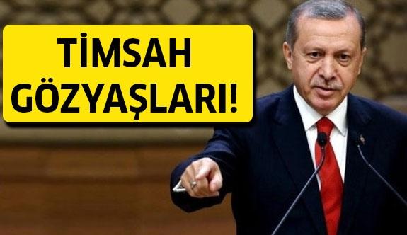 Erdoğan NATO toplantısında konuştu!