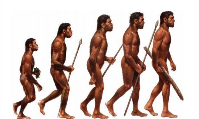 Doğadaki başkalaşımı gözlemleyen ilk insan kimdi?