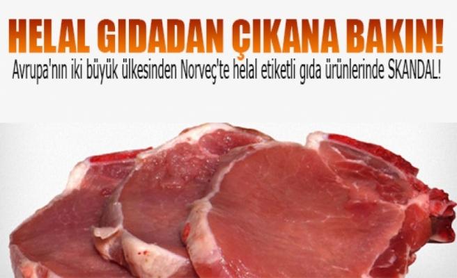 'Helal' gıda ürünlerinden domuz eti çıktı