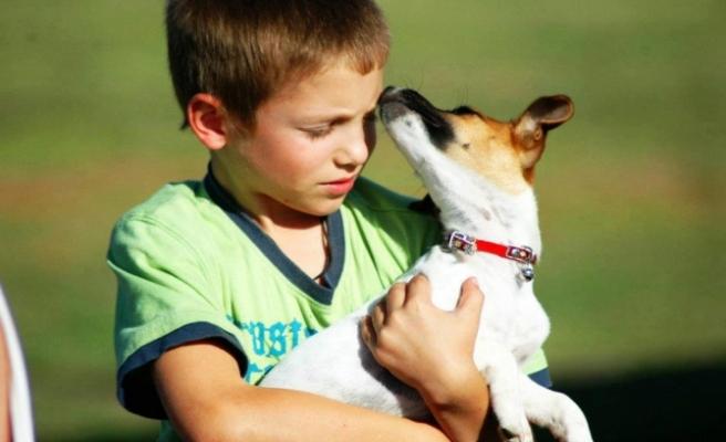Küçük Çocuk ve Köpek Yavrusu