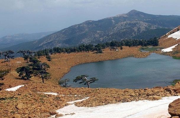 Mahsur kalan 14 dağcıya ulaşıldı