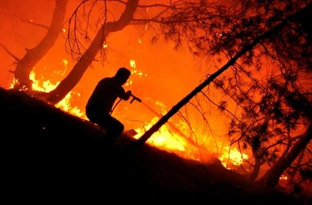 Spil Dağı'nda yangın