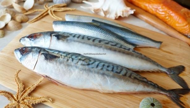 Taze balığı nasıl anlarız?