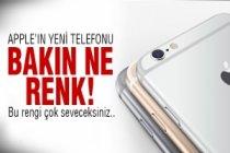 İşte Iphone 6S'in rengi..