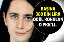 O PKK'lı öldürüldü!