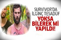 Survivor'da göz göre göre..