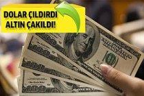 Dolar ve Çeyrek Altında Son Durum!