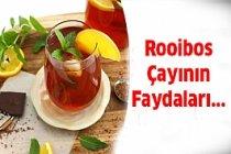 Rooibos Çayınin İnanılmaz Faydaları