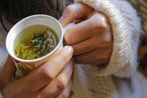 En Etkili Bitki Çayları