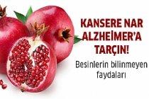 Kansere Nar,Alzheimera Tarçın!