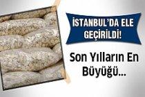 Son senelerin en büyüğü! İstanbul'da ele geçirildi