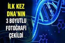 DNA'nın 3 boyutlu fotoğrafı ilk kez çekildli