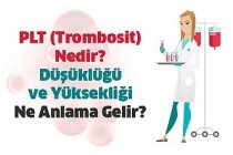 PLT - Trombosit Nedir? Düşüklüğü ve Yüksekliği Ne Anlama Gelir?