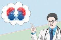 Böbrek Enfeksiyonu Belirtileri ve Tedavisi